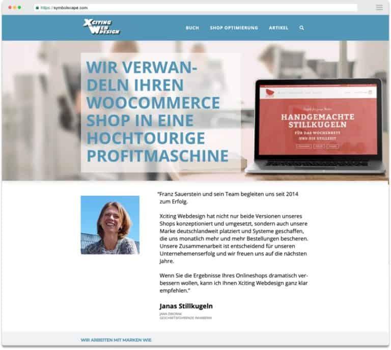agency website screenshot