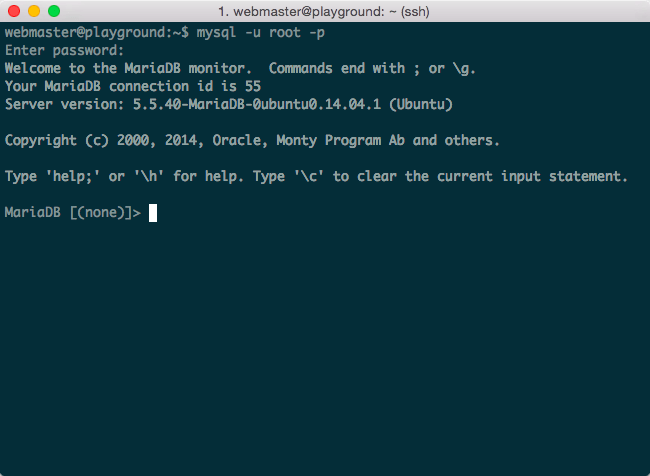 WordPress VPS MySQL access
