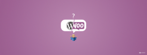 WordPress Developer vs WooCommerce Specialist: How Should You Hire For Your Store?